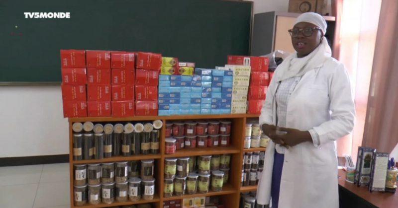 Sénégal : comment la médecine chinoise séduit jusqu'en Afrique