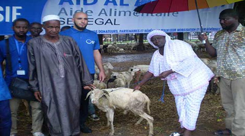 Tabaski-2018: Distribution de 250 moutons aux ménages de Tamba et de Sinthiou-malem