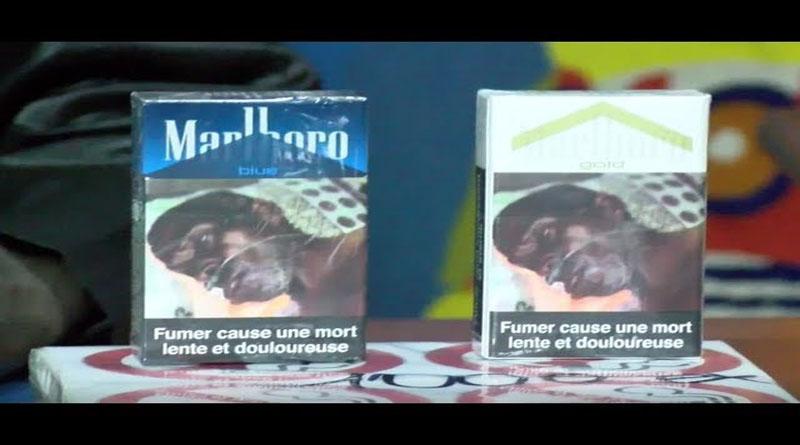 lancement d'un projet dédié à ''l'application effective'' des images sanitaires sur les paquets de cigarettes